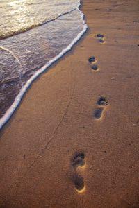 footprintssand_web